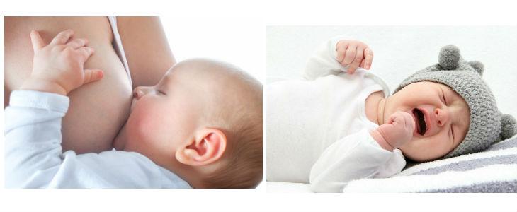 lactancia-i-proteccio