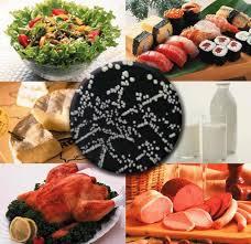 alimentos metales