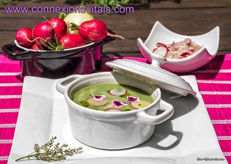Crema Verde con Verduras Maceradas