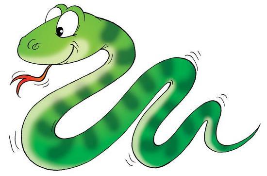 Empieza El Año 2013 El Año De La Serpiente De Agua Connexions